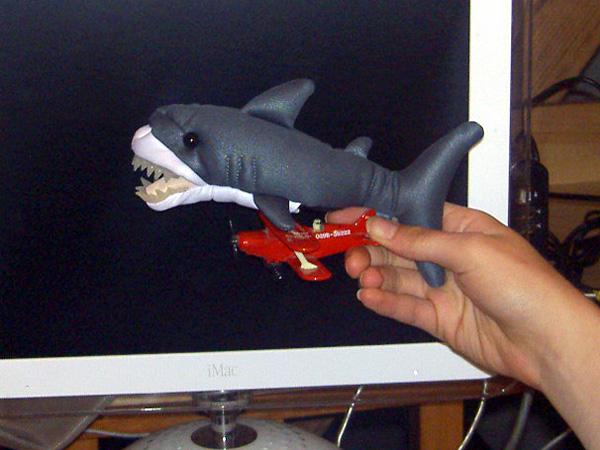 Shark on a Plane!