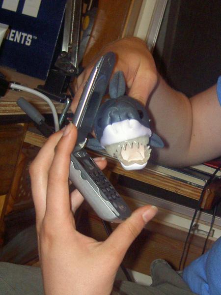 Shark on a Phone!