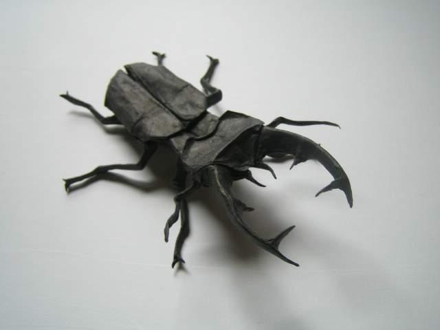 Все эти жуки сделаны из бумаги!