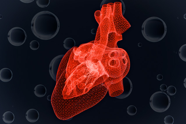 Study predicts heart cell's response to dwindling oxygen