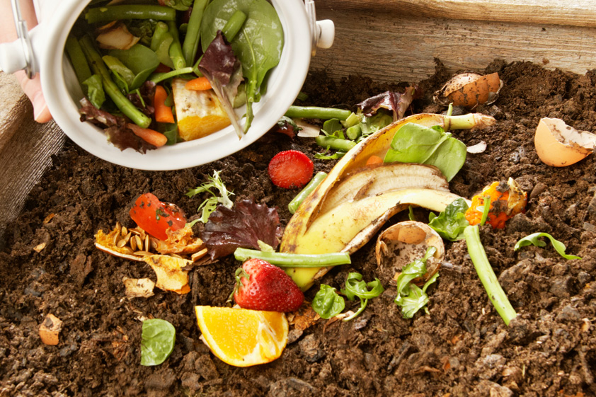 Study: For food-waste recycling, policy is key