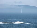 Acadia1203_OtterCliff