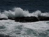 Acadia1205_OtterCliff