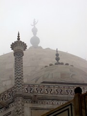 Agra195_TajMahal_Closeups