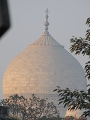 Agra215_TajMahal_Closeups