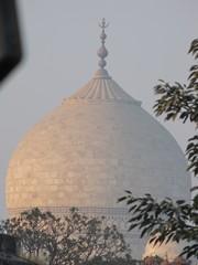 Agra215_TajMahal_Closeups