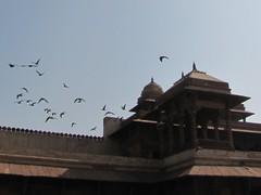 Agra437_VatehpurSikri