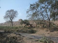 Agra454_VatehpurSikri