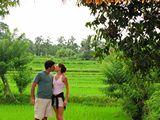 Ubud0047_RiceFields_AyungRiver