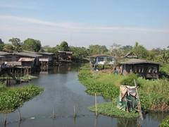 Ayutthaya158_RiceFields