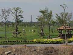 Ayutthaya208_RiceFields