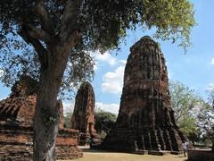 Ayutthaya314_WatMahathat_Court