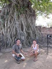 Ayutthaya435_WatMahathat_BuddhaTree