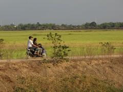 Ayutthaya617_ReturnTrain