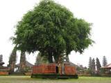 Bali387_PuraUlunDanuBatur