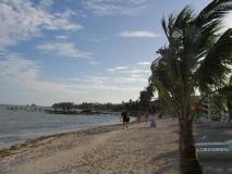 Belize221