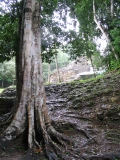 Lamanai_Temples14