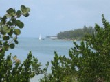 Bermuda06
