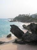 Bermuda09