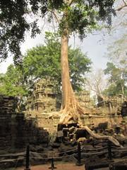 Cambodia1556_TaPhrom_FirstCourt
