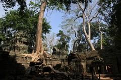 Cambodia1560_TaPhrom_FirstCourt