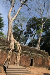 Cambodia1576_TaPhrom_FirstCourt