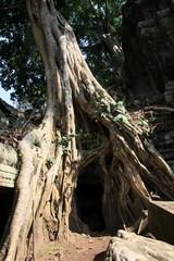 Cambodia1684_TaPhrom_InnerCourt