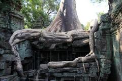Cambodia1786_TaPhrom_LastCourt