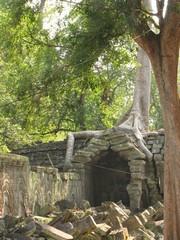 Cambodia1866_TaPhrom_BackAround