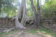 Cambodia1870_TaPhrom_BackAround