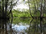 canoeing24