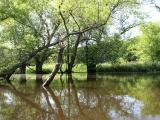 canoeing27