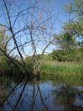canoeing28