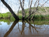 canoeing30