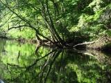 canoeing37