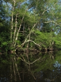 canoeing39
