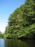 canoeing42