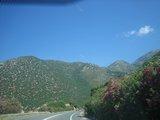 Crete0363_RoadToKnossos