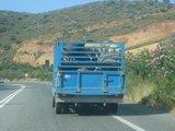 Crete0729_Bali_RoadTrip