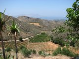Crete1067_Palaiochora_RoadTrip