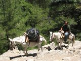 Crete1414_Samaria_DescentStairs2