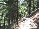 Crete1510_Samaria_ClimbingDown