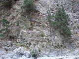 Crete1825_Samaria_StreamsAndBridges