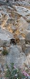 Crete1868_Samaria_TheEnd2