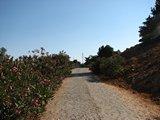 Crete1870_Samaria_TheEnd