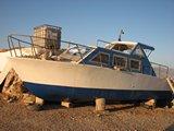 Crete2349_GoatsAndCats_Mpalos_Taverna