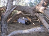 DeathValley0445_FurnaceCreekCamping