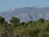 DeathValley0453_FurnaceCreekCamping