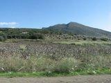 Delphi015_RoadTrip