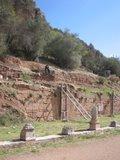 Delphi256_Gymnasium